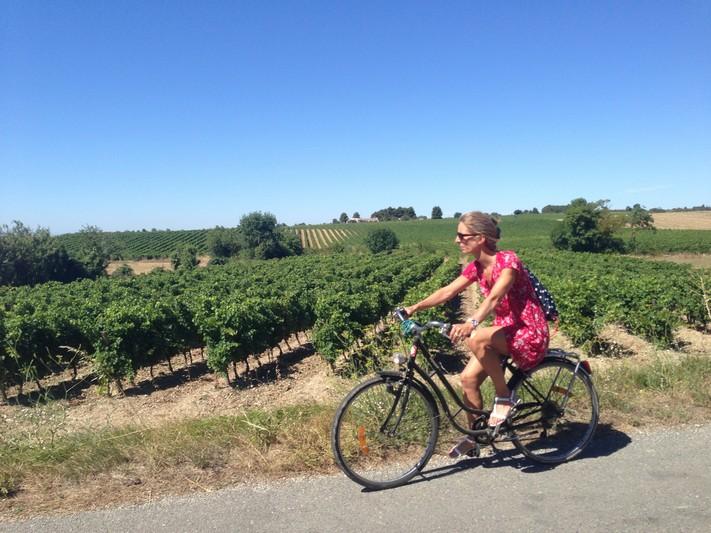 Vigne à Ventenac