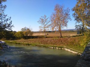 gite-carcassonne-canal-du-midi-en-hiver